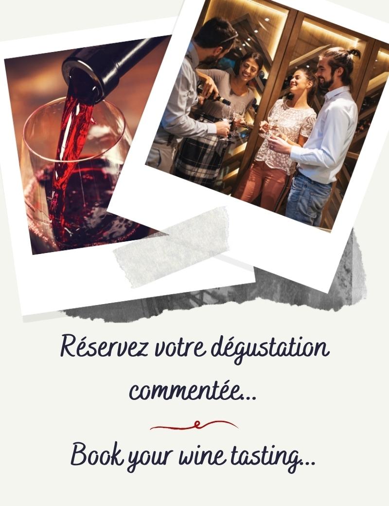 Dégustation commentée de nos vins