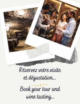 Tour and Wine testing
